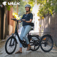 VALK 250W 10Ah Electric Tricycle, Shimano Gears, Disc Brakes, Side Mirrors, for Adults Seniors - Black