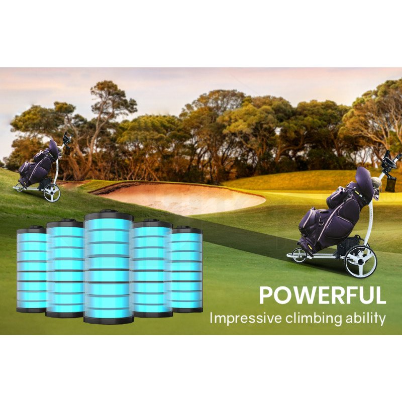 THOMSON 12V 24Ah Lithium Battery for Electric Golf Buggy, Mobility Scooter by Thomson