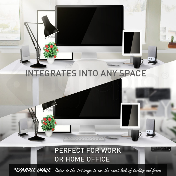 AVANTE Curve Sit/Stand Motorised Height Adjustable Desk 160cm White/Oak by Avante